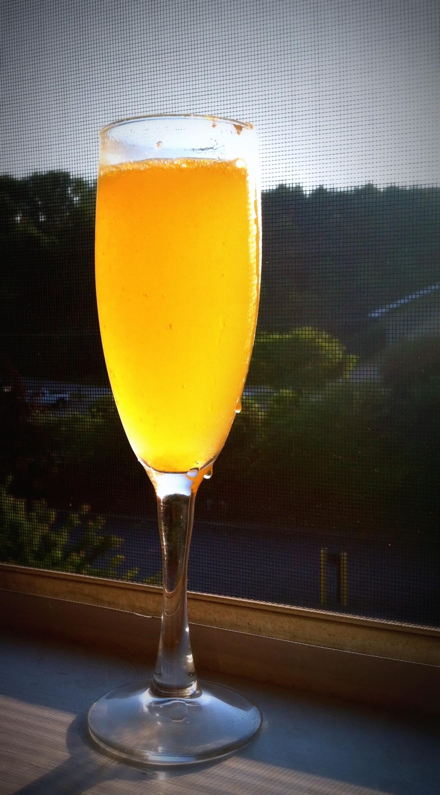 Mimosa Brunch Insert, the mimosa.