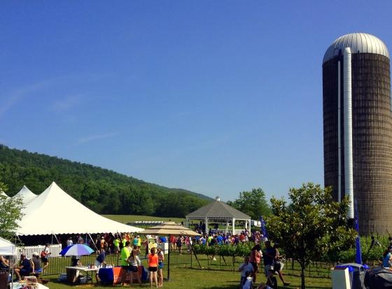 Wine Country Half Marathon Festival