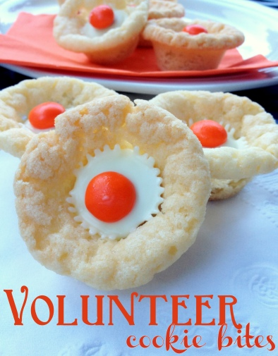 Volunteer Cookie Bites